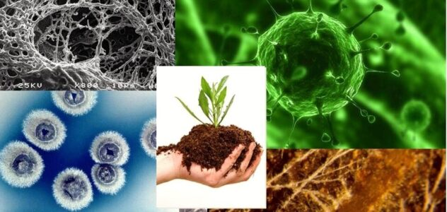 Agricultural Microbials