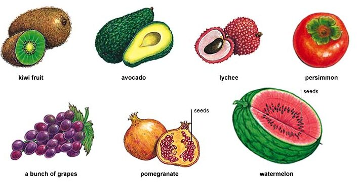 Fruit and Vegetable Seeds