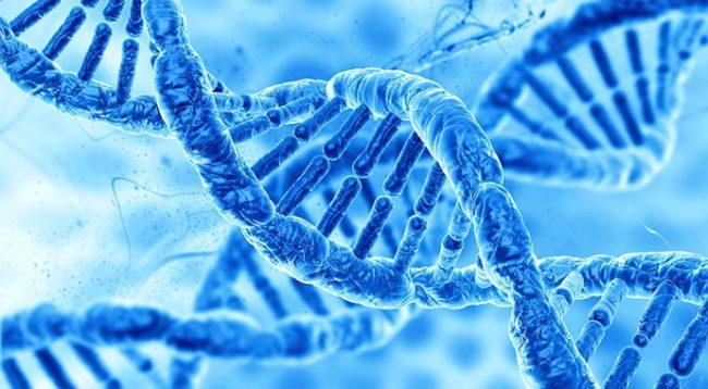 Somatic Genetic Testing